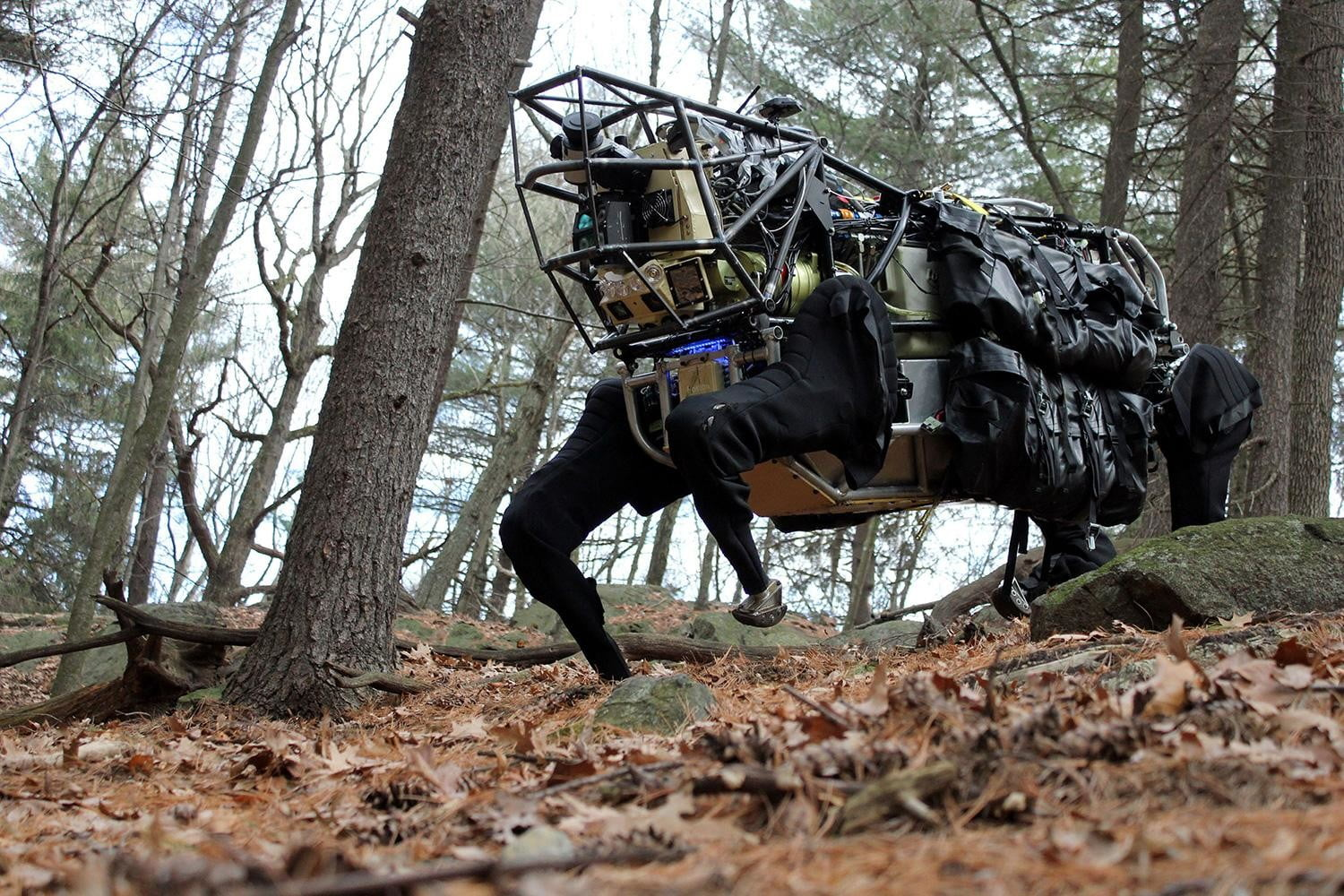 Why is Google building a robot army?
