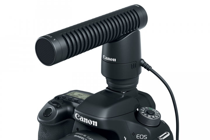 Canon EOS 80D with DM-E1 Directional Stereo Microphone.